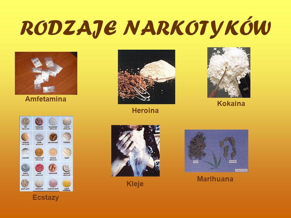 RODZAJE NARKOTYKÓW Amfetamina Kokaina Heroina Marihuana Kleje Ecstazy