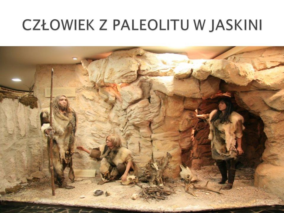 CZŁOWIEK Z PALEOLITU W JASKINI