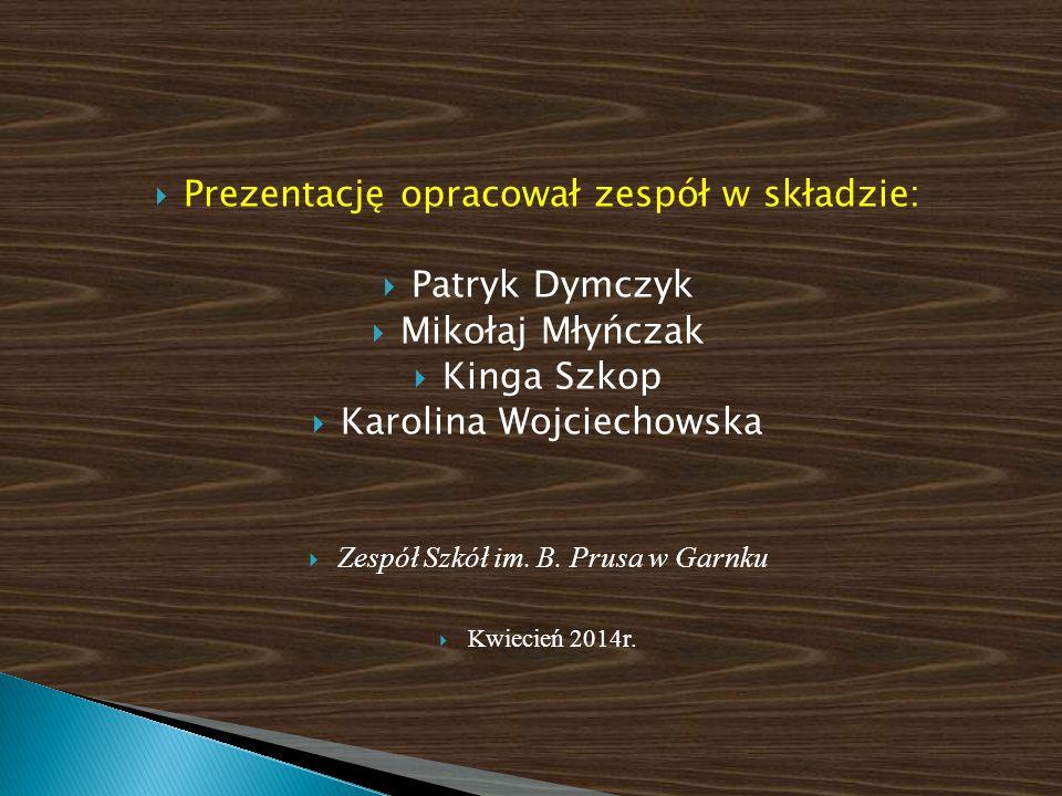 Prezentację opracował zespół w składzie: Patryk Dymczyk