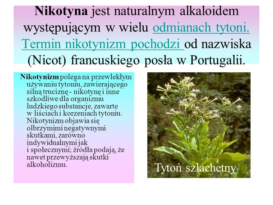Nikotyna jest naturalnym alkaloidem występującym w wielu odmianach tytoni. Termin nikotynizm pochodzi od nazwiska (Nicot) francuskiego posła w Portugalii.