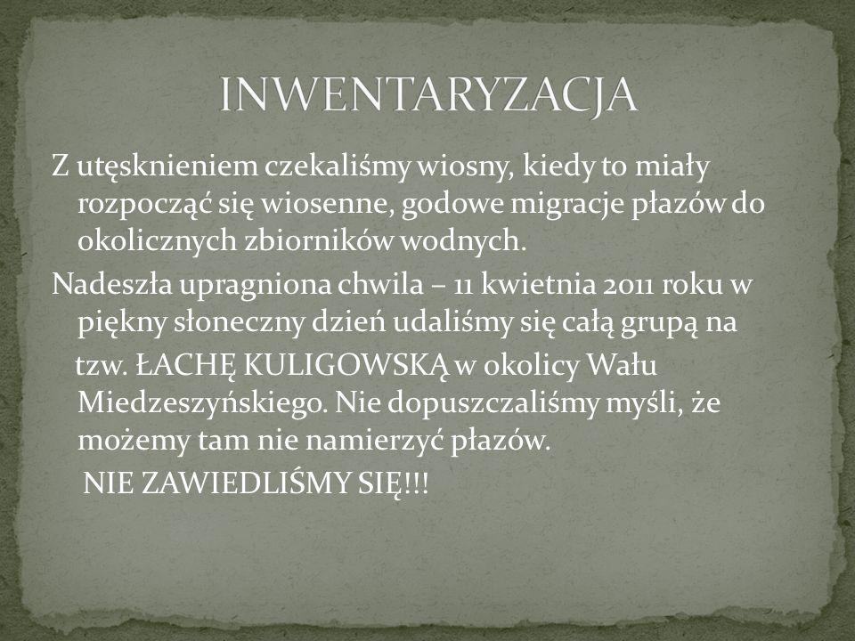 INWENTARYZACJA