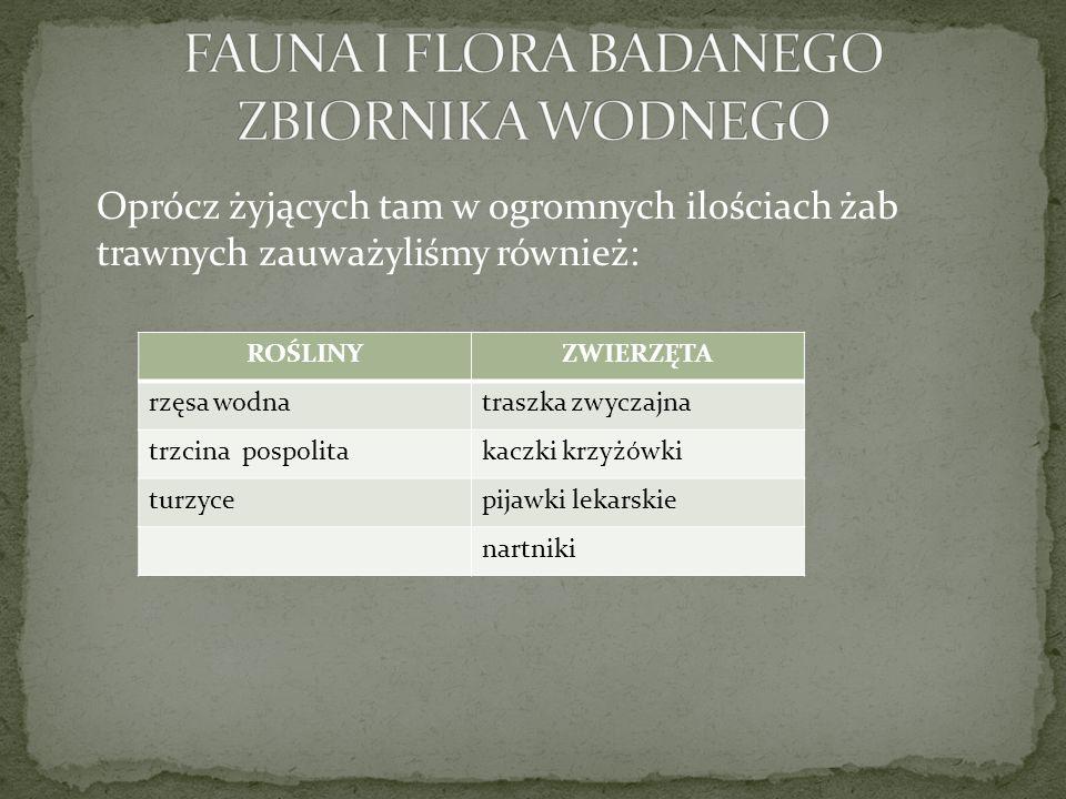 FAUNA I FLORA BADANEGO ZBIORNIKA WODNEGO