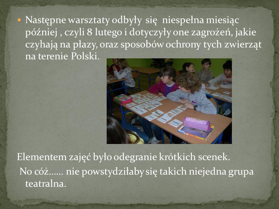 Następne warsztaty odbyły się niespełna miesiąc później , czyli 8 lutego i dotyczyły one zagrożeń, jakie czyhają na płazy, oraz sposobów ochrony tych zwierząt na terenie Polski.