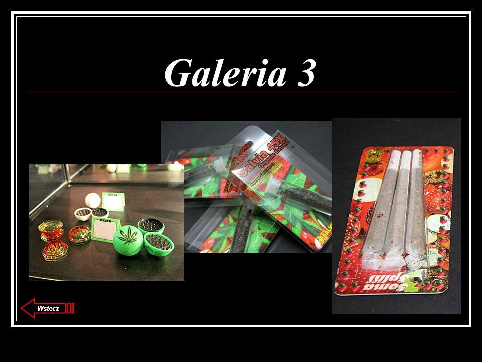 Galeria 3 Wstecz