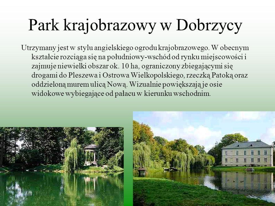 Park krajobrazowy w Dobrzycy