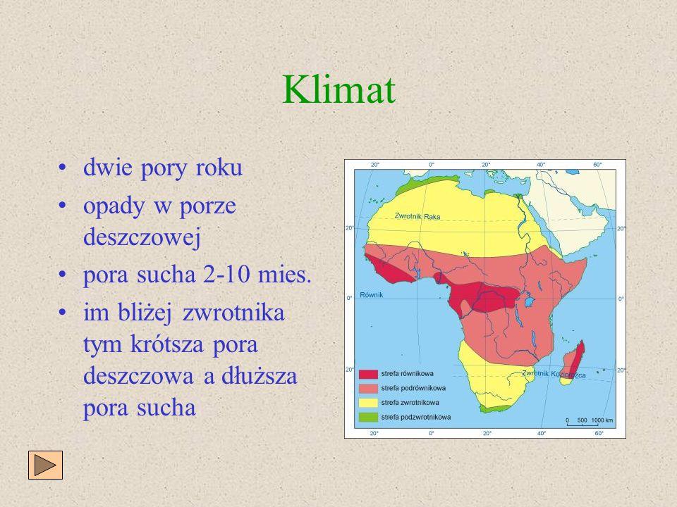 Klimat dwie pory roku opady w porze deszczowej pora sucha 2-10 mies.