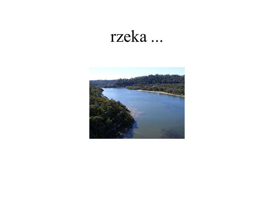 rzeka ...