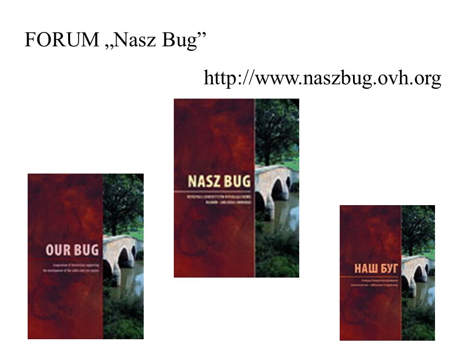 "FORUM ""Nasz Bug"