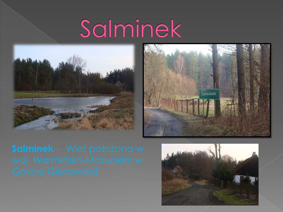Salminek Salminek – Wieś położona w woj. Warmińsko-Mazurskim w Gminie Gietrzwałd