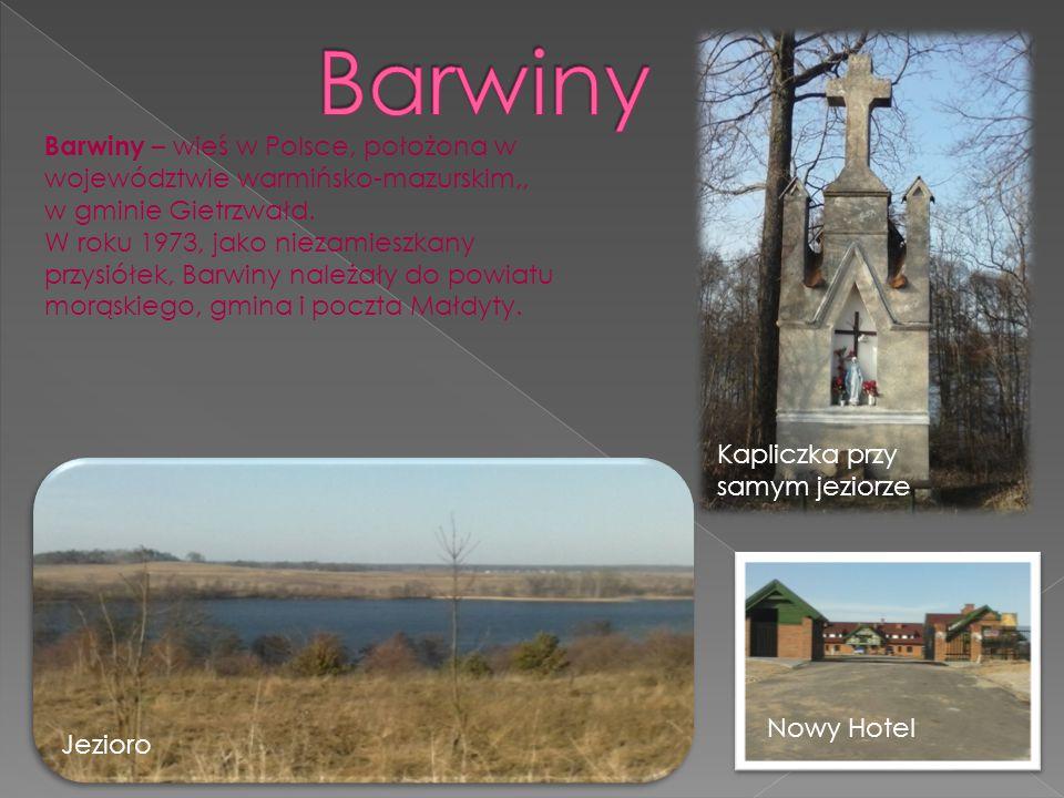 Barwiny Barwiny – wieś w Polsce, położona w województwie warmińsko-mazurskim,, w gminie Gietrzwałd.