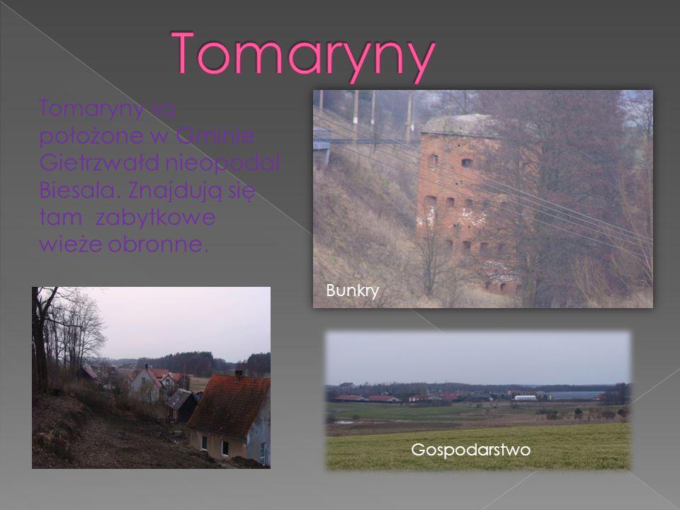 Tomaryny Tomaryny są położone w Gminie Gietrzwałd nieopodal Biesala. Znajdują się tam zabytkowe wieże obronne.