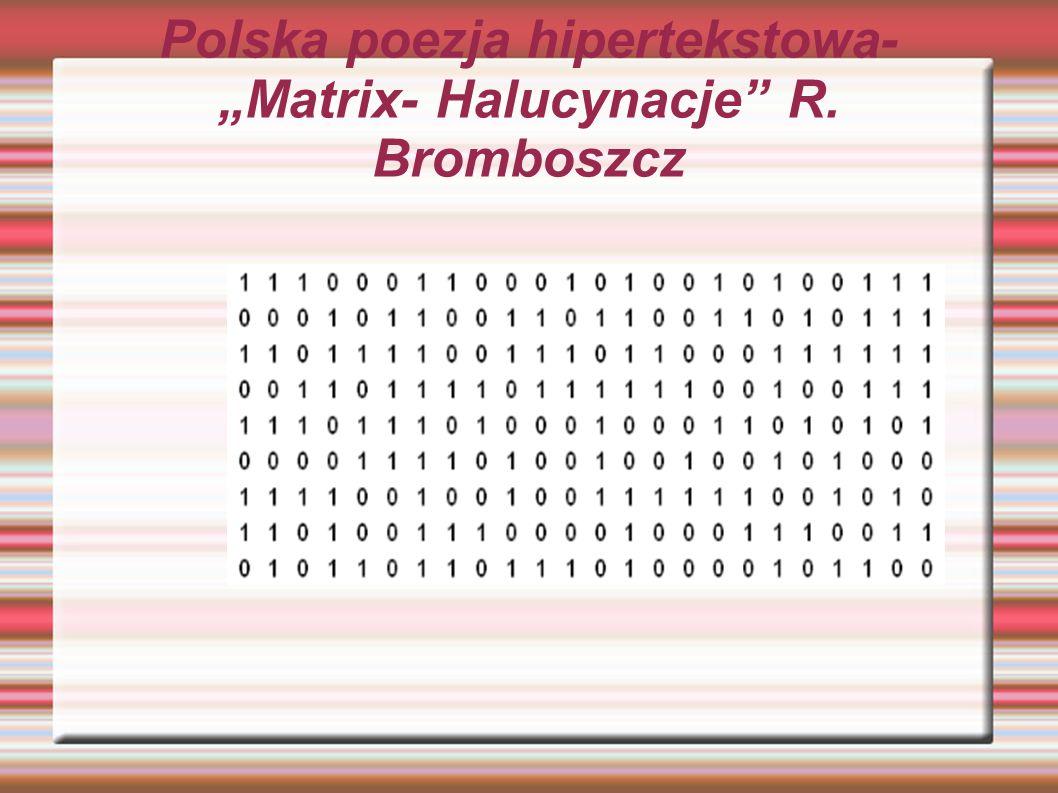 """Polska poezja hipertekstowa- """"Matrix- Halucynacje R. Bromboszcz"""
