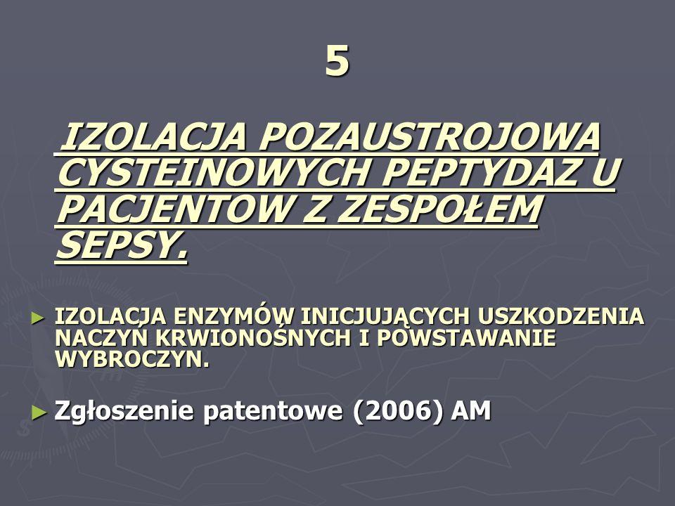 5 Zgłoszenie patentowe (2006) AM