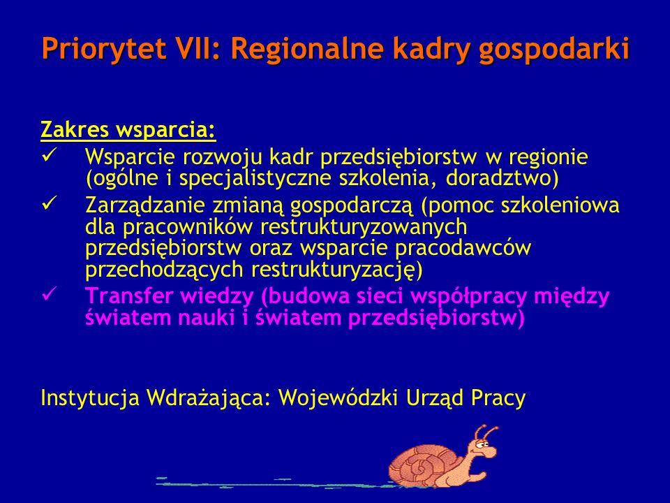 Priorytet VII: Regionalne kadry gospodarki