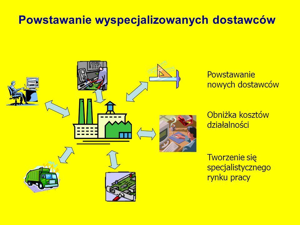 Powstawanie wyspecjalizowanych dostawców