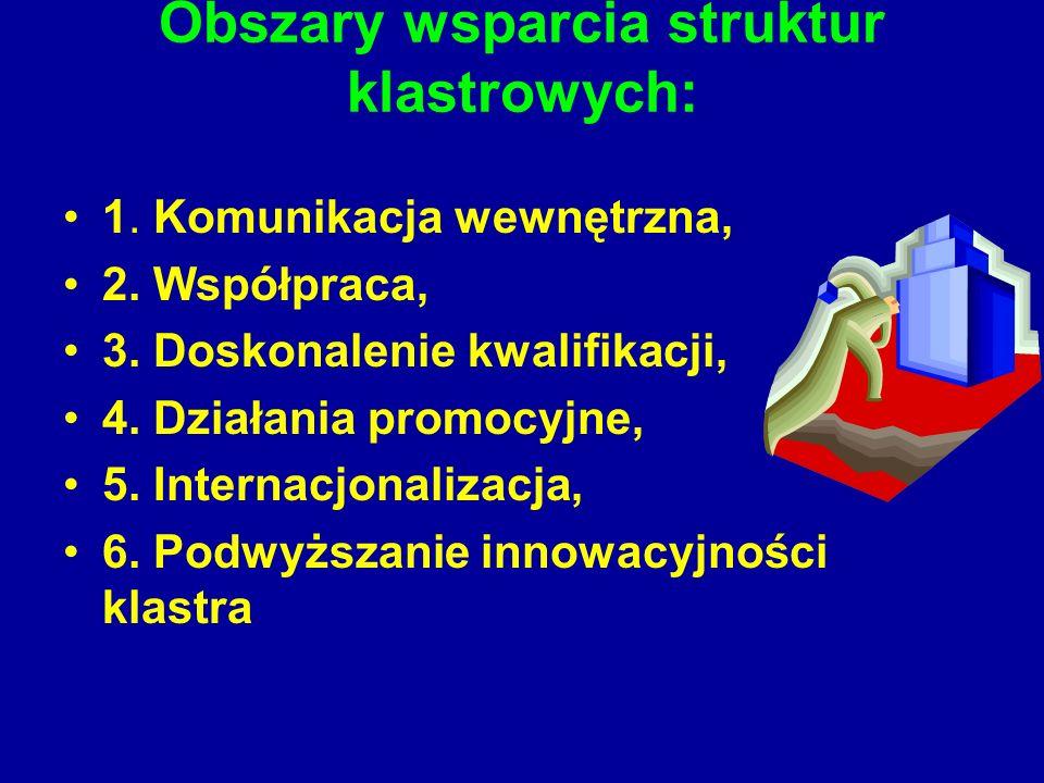 Obszary wsparcia struktur klastrowych: