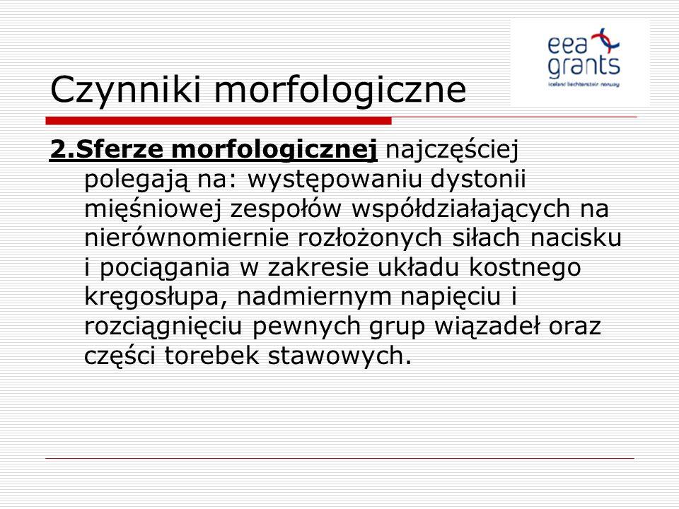 Czynniki morfologiczne
