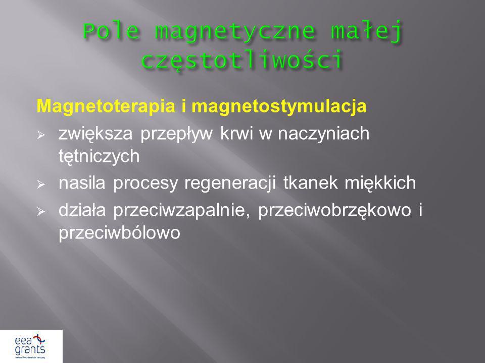 Pole magnetyczne małej częstotliwości