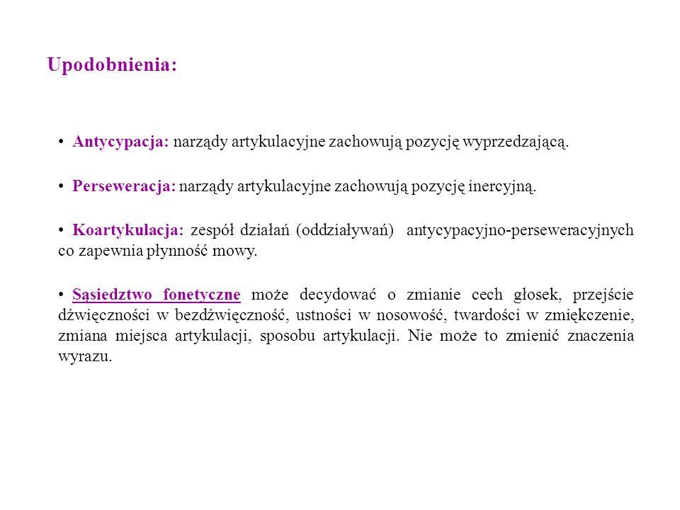 Upodobnienia: Antycypacja: narządy artykulacyjne zachowują pozycję wyprzedzającą. Perseweracja: narządy artykulacyjne zachowują pozycję inercyjną.