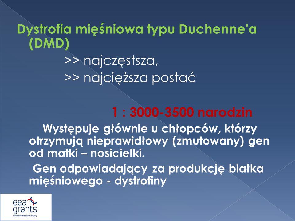 Dystrofia mięśniowa typu Duchenne a (DMD) >> najczęstsza,