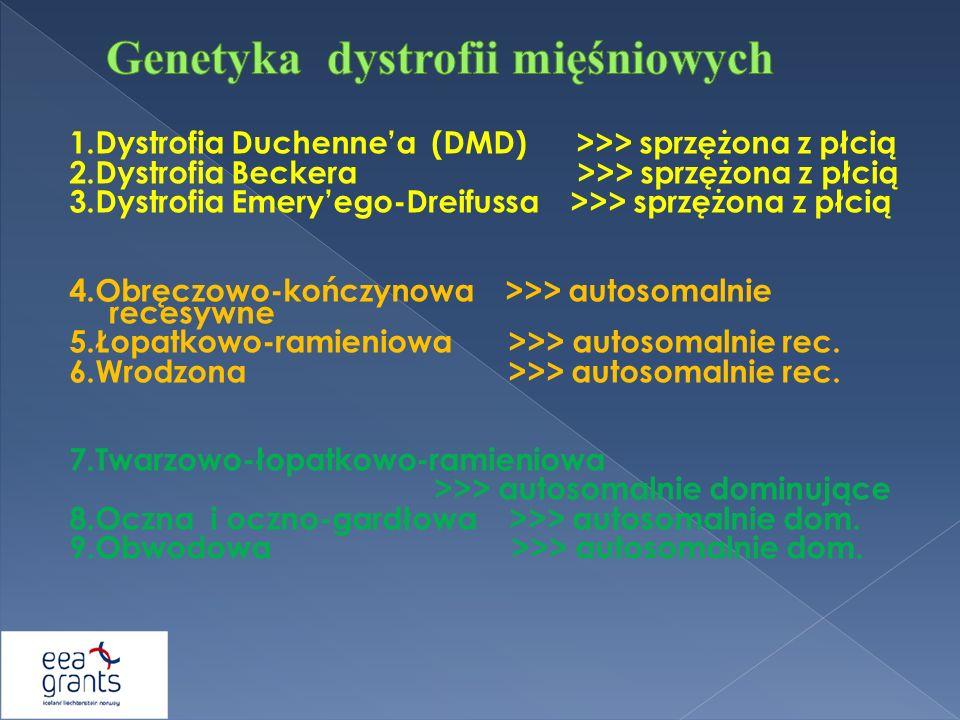 Genetyka dystrofii mięśniowych