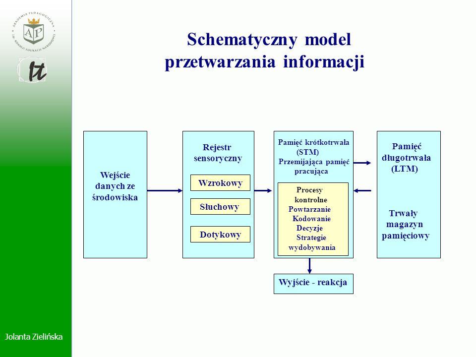 Schematyczny model przetwarzania informacji