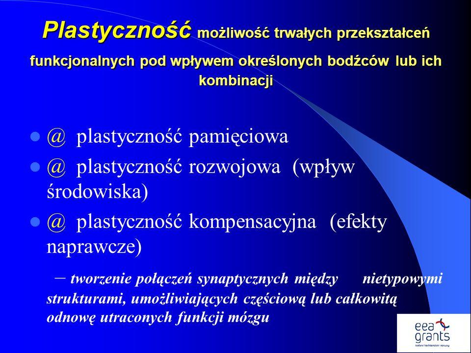 Plastyczność możliwość trwałych przekształceń funkcjonalnych pod wpływem określonych bodźców lub ich kombinacji