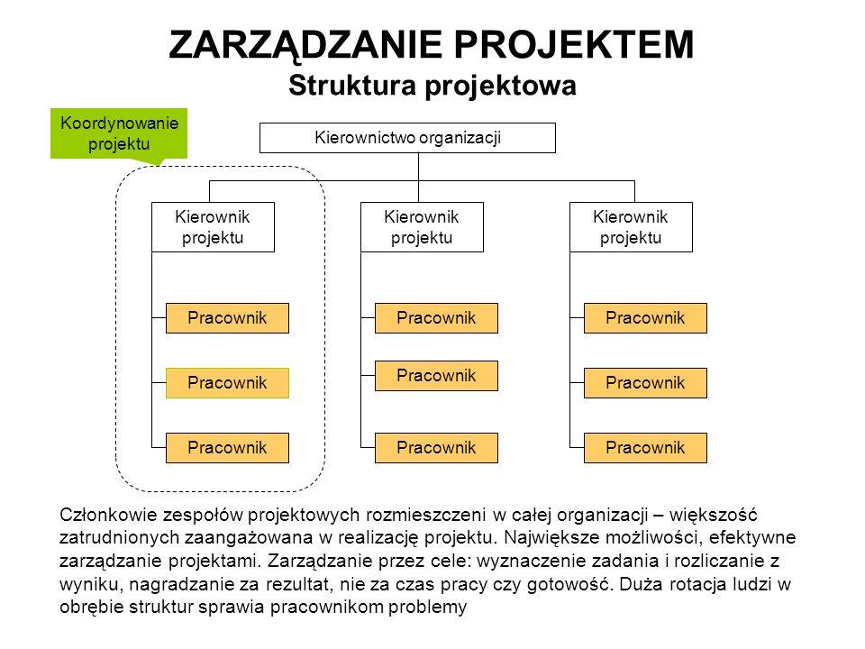 ZARZĄDZANIE PROJEKTEM Struktura projektowa