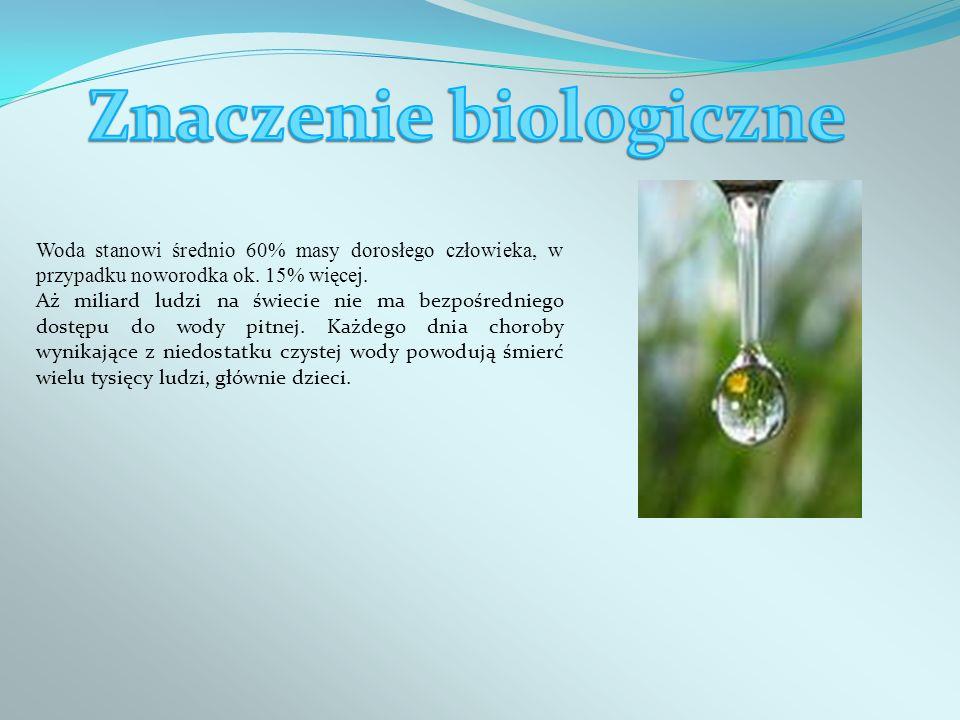 Znaczenie biologiczne
