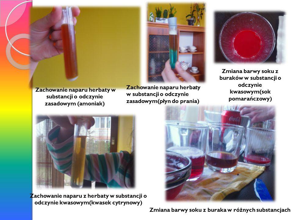 Zachowanie naparu herbaty w substancji o odczynie zasadowym (amoniak)
