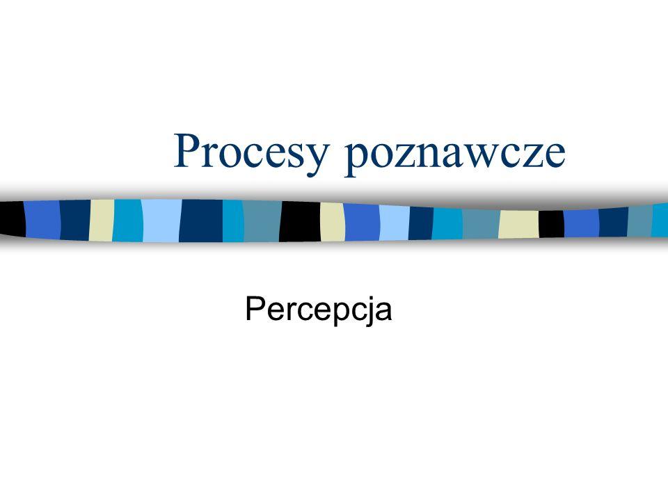 Procesy poznawcze Percepcja