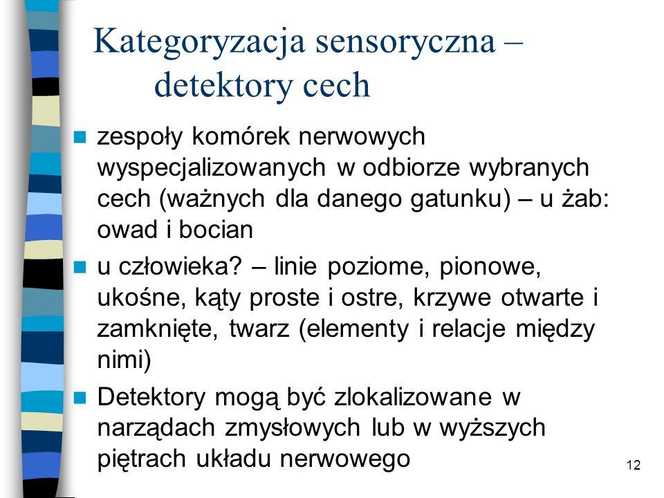 Kategoryzacja sensoryczna – detektory cech