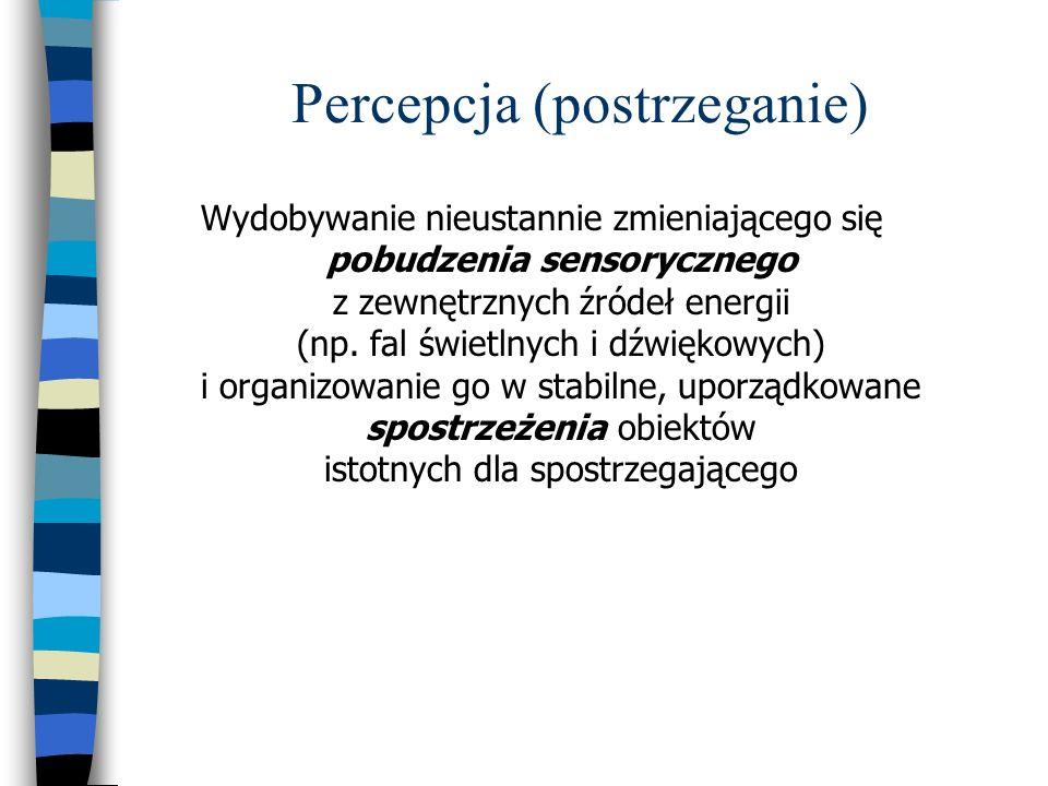 Percepcja (postrzeganie)