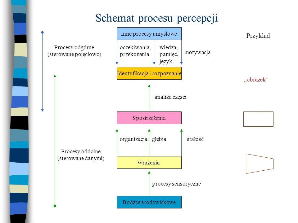 Schemat procesu percepcji