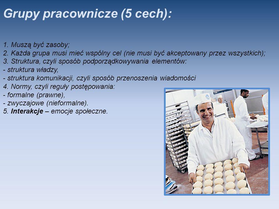 Grupy pracownicze (5 cech):