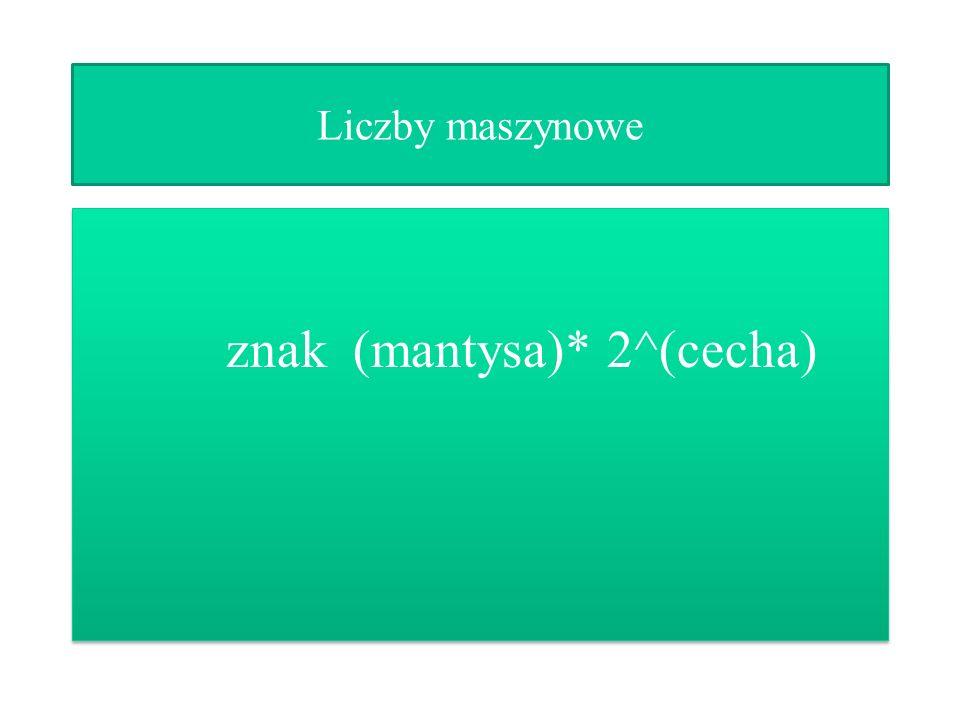 znak (mantysa)* 2^(cecha)