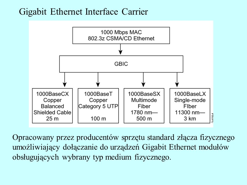 Gigabit Ethernet Interface Carrier