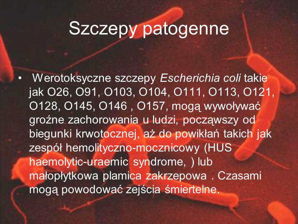 Szczepy patogenne