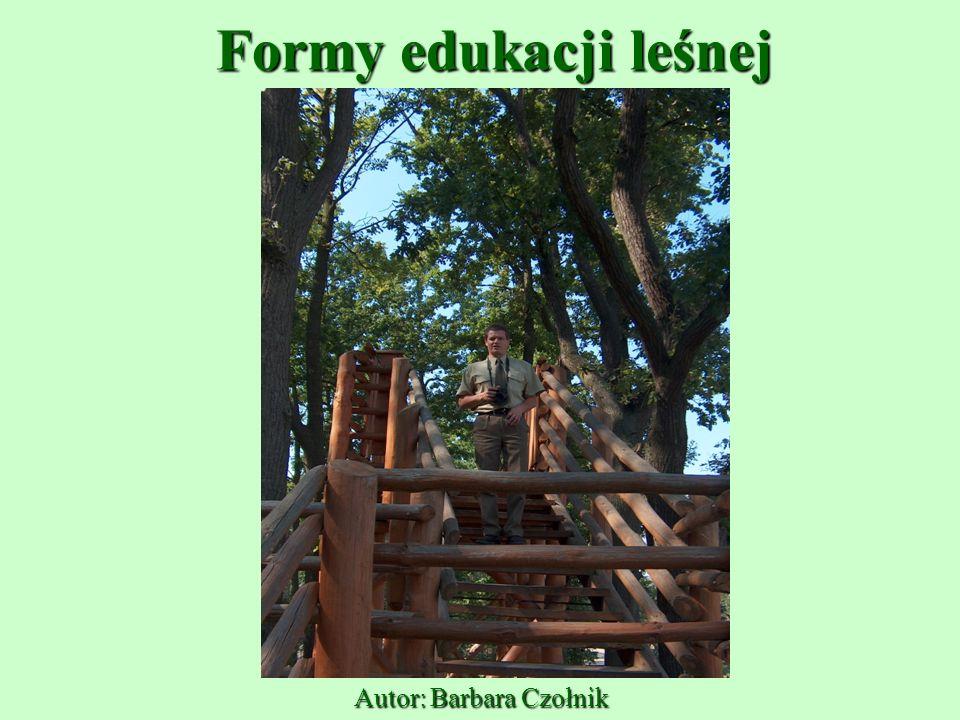 Formy edukacji leśnej Autor: Barbara Czołnik