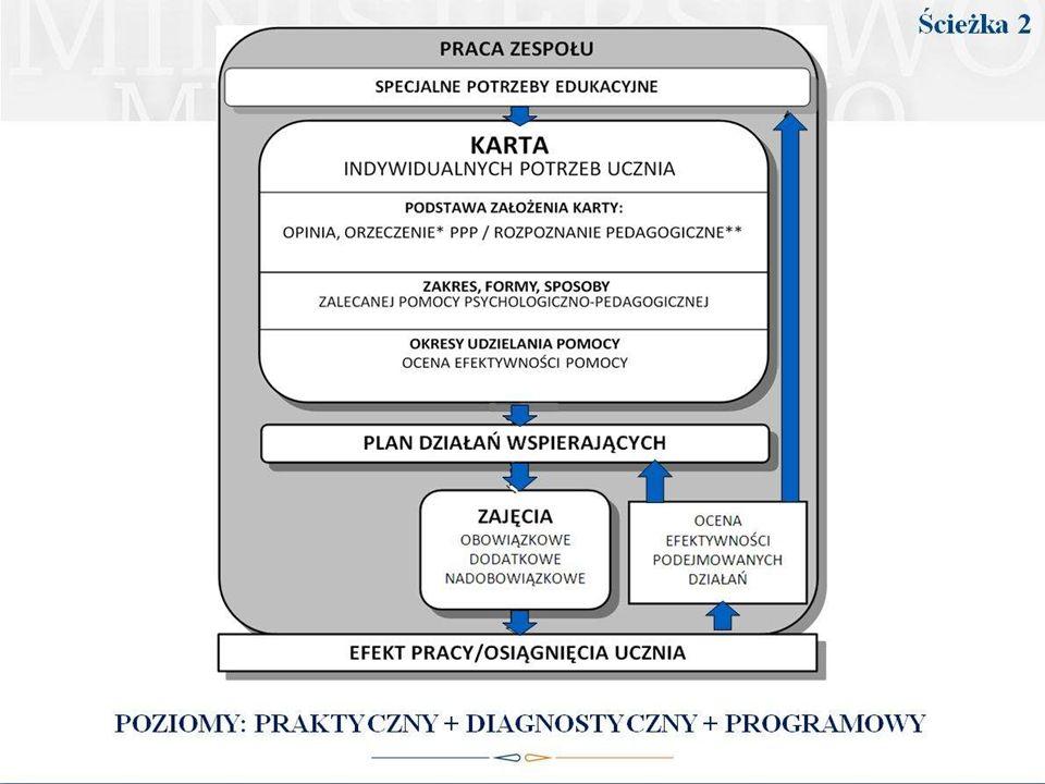 Podsumowanie - kierunki działań Zespołu realizujacego z uczniem PDW.