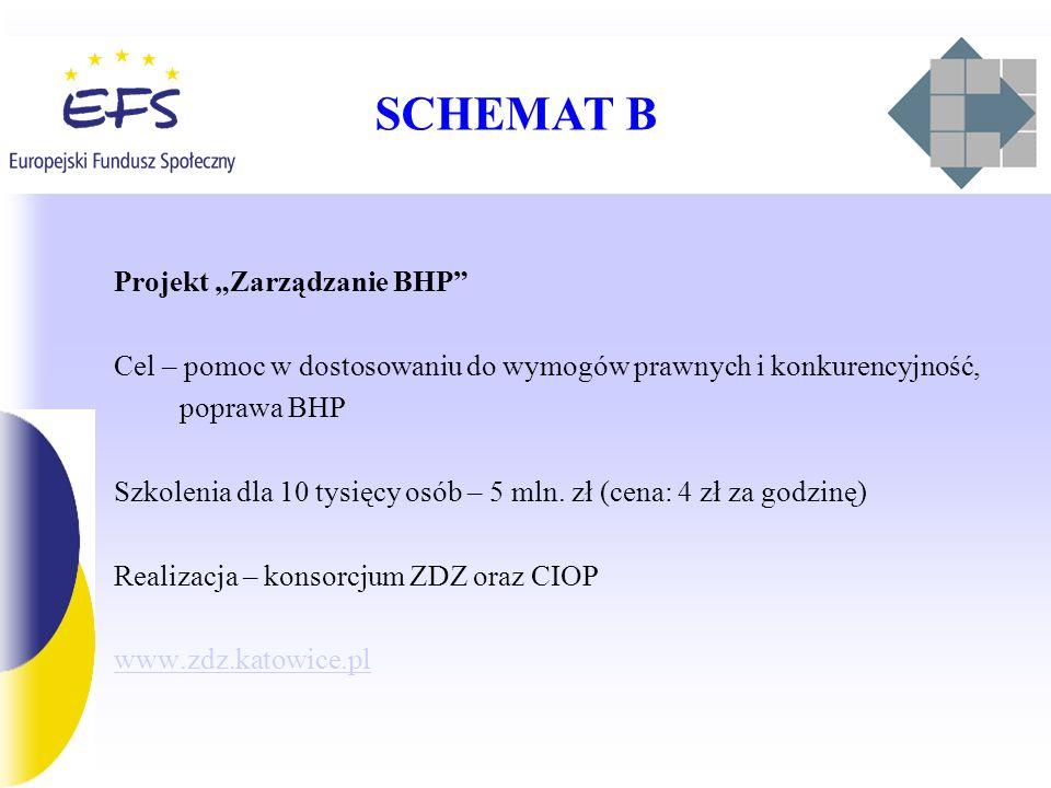 """SCHEMAT B Projekt """"Zarządzanie BHP"""