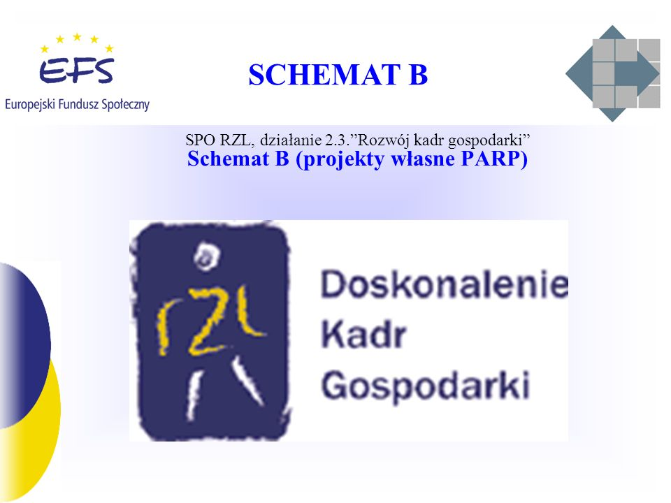 Schemat B (projekty własne PARP)
