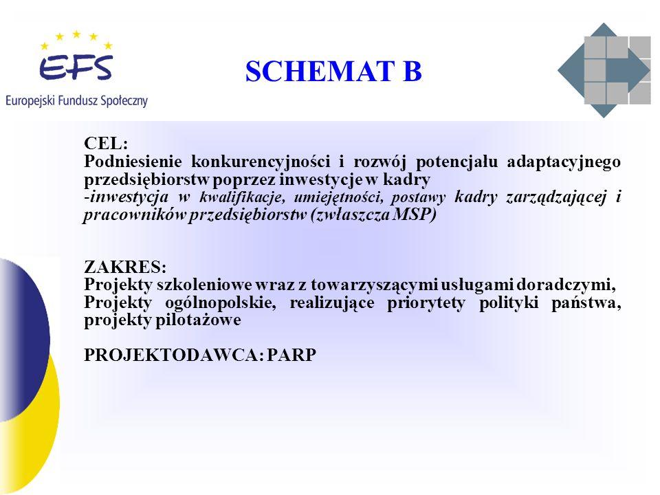 SCHEMAT B CEL: Podniesienie konkurencyjności i rozwój potencjału adaptacyjnego przedsiębiorstw poprzez inwestycje w kadry.