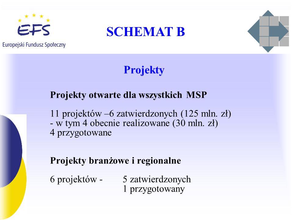 SCHEMAT B Projekty Projekty otwarte dla wszystkich MSP