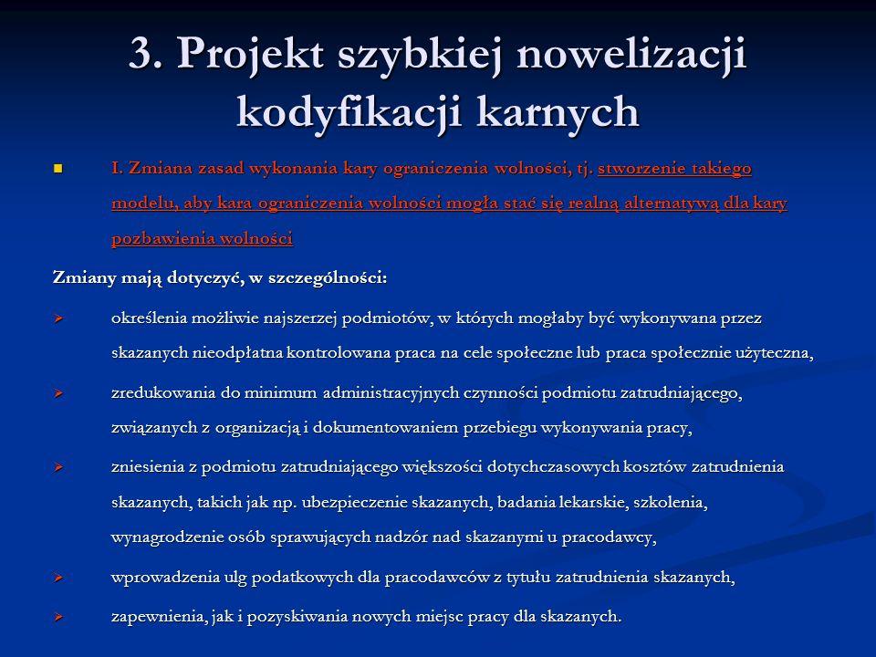 3. Projekt szybkiej nowelizacji kodyfikacji karnych