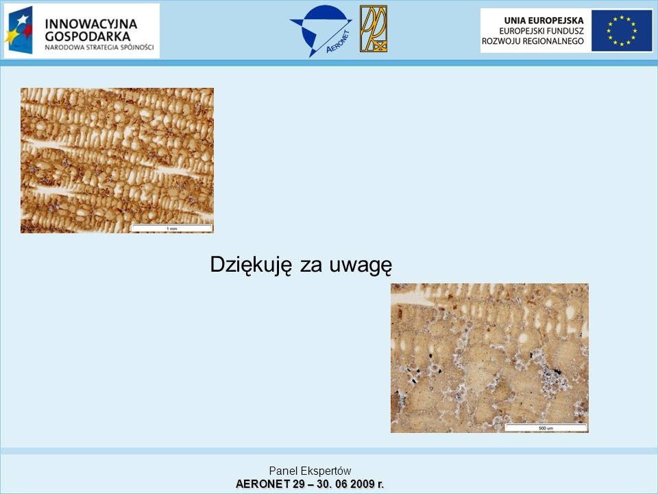 Dziękuję za uwagę Panel Ekspertów AERONET 29 – 30. 06 2009 r. 11