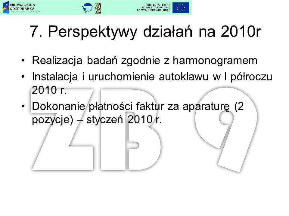 7. Perspektywy działań na 2010r