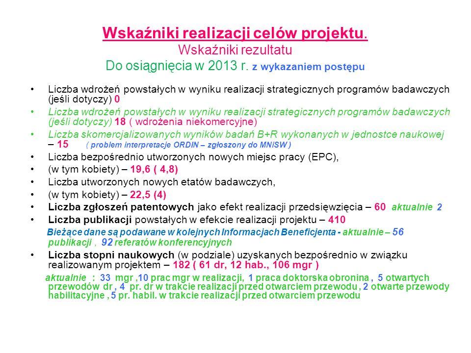 Wskaźniki realizacji celów projektu