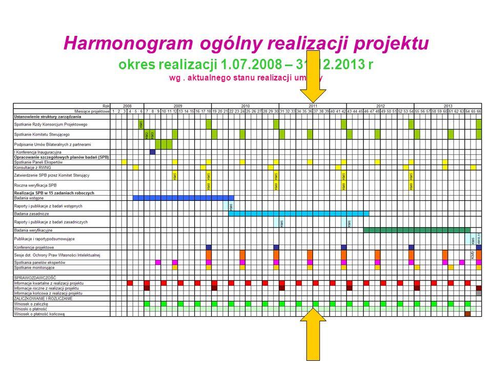 Harmonogram ogólny realizacji projektu okres realizacji 1. 07