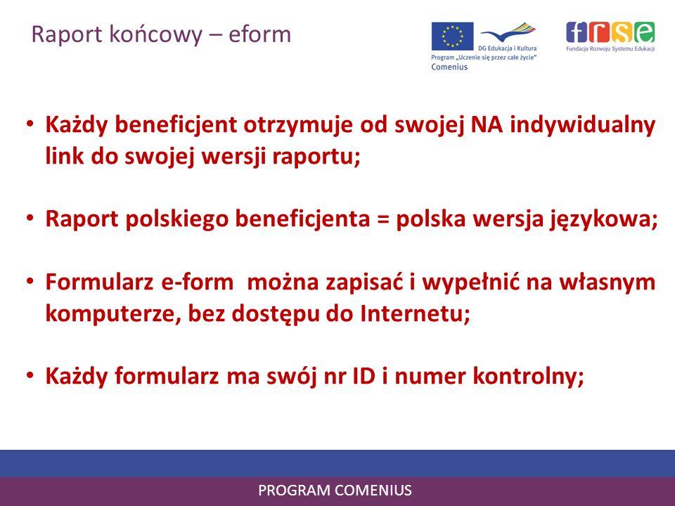 Raport polskiego beneficjenta = polska wersja językowa;